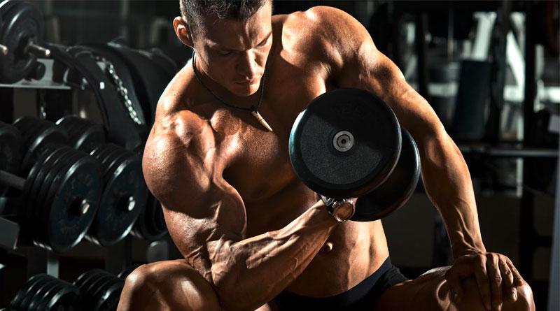 Nahrungsergänzung im Kraftsport – Proteine, worauf muss ich achten?